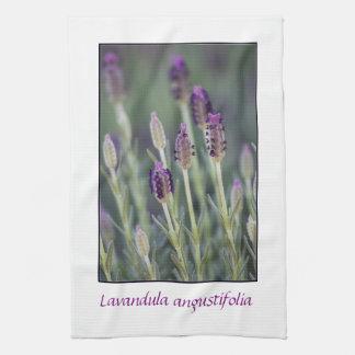 Lavender in Bloom Tea Towel