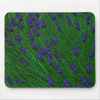 Lavender meadow mouse pad
