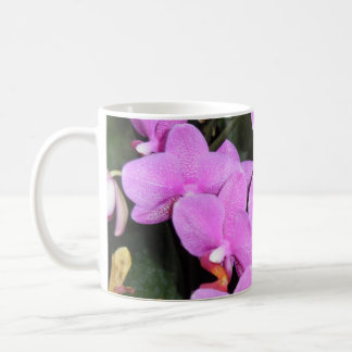 LAVENDER ORCHID CUP