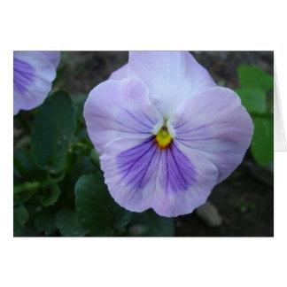 Lavender Pansy Card