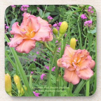 Lavender Pink Double Daylilies Coaster