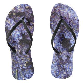 Lavender Thongs