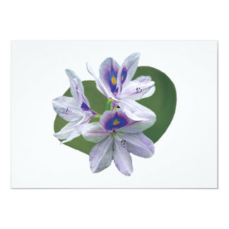 Lavender Water Lilies Invitations