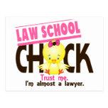 Law School Chick 3