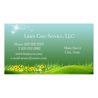lawn_service_business2 pack of standard business cards