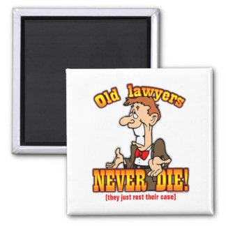 Lawyers Fridge Magnets
