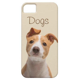 Layer for cellular with pretty photo of a dog iPhone 5 cover