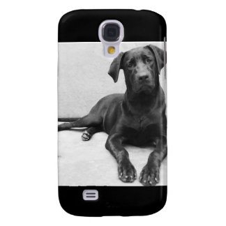 Layer iPhone 4 Labrador Galaxy S4 Case