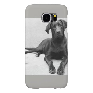 Layer iPhone 4 Labrador Samsung Galaxy S6 Cases