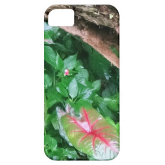 "Layer of Cellular ""Natureba "" iPhone 5 Cover"