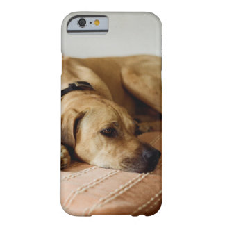 Lazy Dog Mobile Case