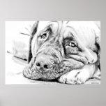 Lazy Mastiff Poster