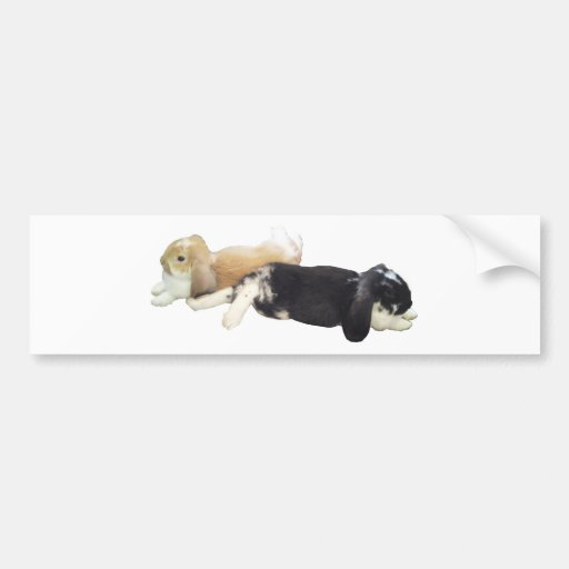 Lazy Rabbits - Bunnies Cute Sleepy Tired Weekend Bumper Stickers
