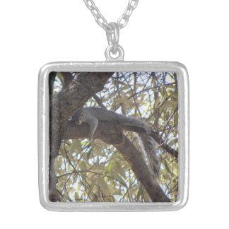 Lazy Rock Squirrel Jewelry