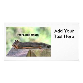 Lazy Squirrel Photo Customized Photo Card
