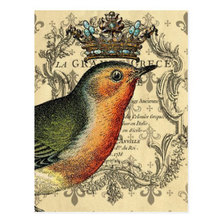 Le Fleur Crowned Bird Postcard