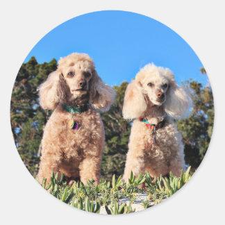 Leach - Poodles - Romeo Remy Classic Round Sticker