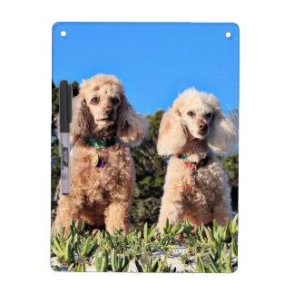 Leach - Poodles - Romeo Remy Dry Erase Board