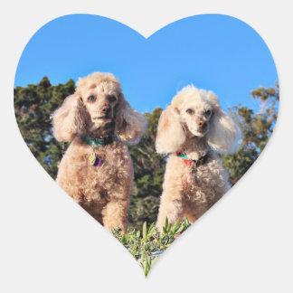 Leach - Poodles - Romeo Remy Heart Sticker