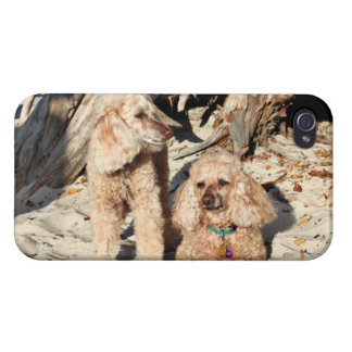 Leach - Poodles - Romeo Remy iPhone 4/4S Case