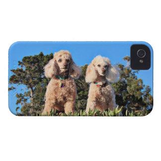 Leach - Poodles - Romeo Remy iPhone 4 Case-Mate Case