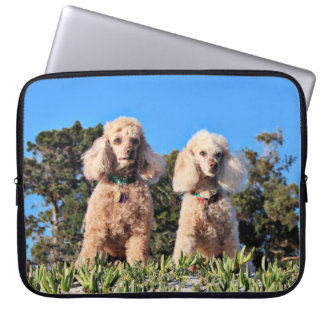 Leach - Poodles - Romeo Remy Laptop Sleeve