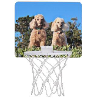 Leach - Poodles - Romeo Remy Mini Basketball Hoop