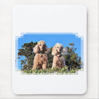 Leach - Poodles - Romeo Remy Mouse Pad
