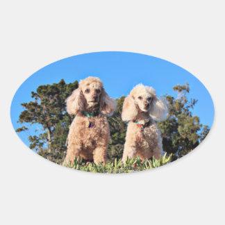 Leach - Poodles - Romeo Remy Oval Sticker
