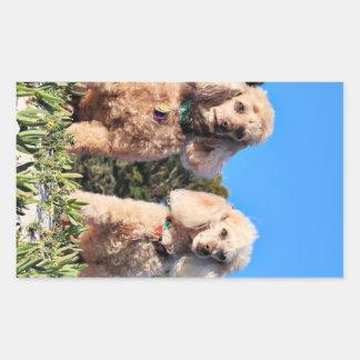 Leach - Poodles - Romeo Remy Rectangular Sticker