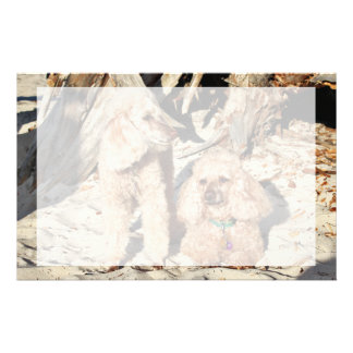 Leach - Poodles - Romeo Remy Stationery