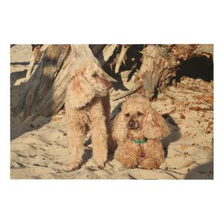 Leach - Poodles - Romeo Remy Wood Wall Decor