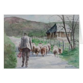 Leading the Sheep Card