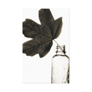 Leaf and Bottle Wrapped Canvas Gallery Wrap Canvas
