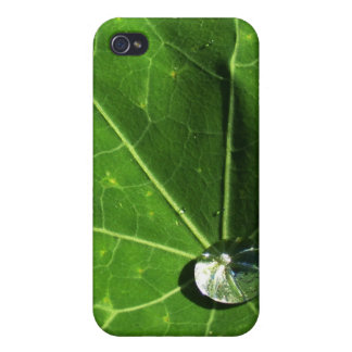 Leaf and Droplet Cases For iPhone 4