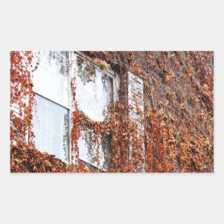 Leaf And Vine Covered Window Rectangular Sticker