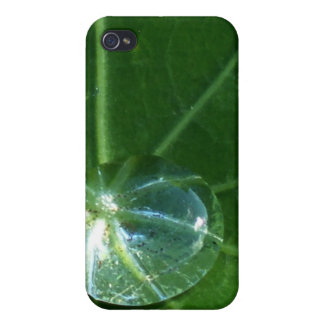 Leaf and Water Drop iPhone 4/4S Case