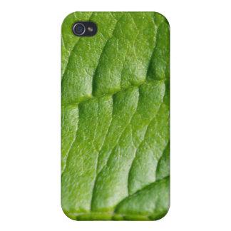 Leaf Background iPhone 4 Case