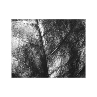 Leaf Stretched Canvas Prints