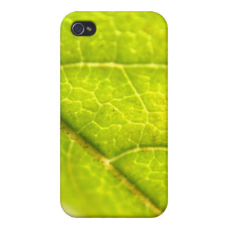 Leaf Details iPhone 4/4S Covers