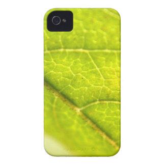 Leaf Details iPhone 4 Case-Mate Cases