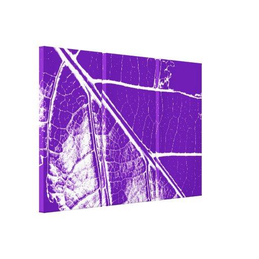Leaf Fine Art 3 Stretched Canvas Print