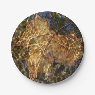 Leaf Floating Downstream Photographic Art Paper Plate