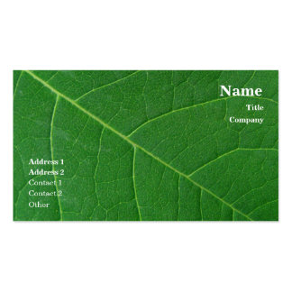 Leaf Green Close-up Photo Simple Business Cards
