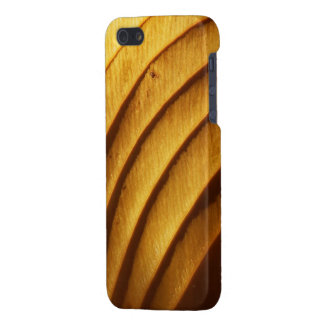 Leaf in Golden Light Savvy iPhone Case Case For The iPhone 5