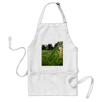 Leaf in grass aprons
