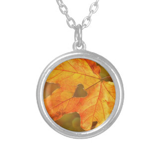 Leaf in Heart Silver Plated Necklace