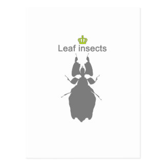 Leaf insects g5 postcard
