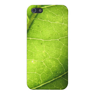 Leaf iPhone 5/5S Covers
