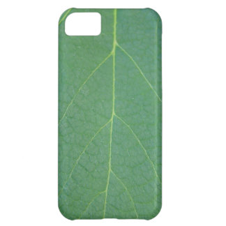 Leaf iPhone 5C Case